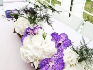 Danses avec les fleurs 1