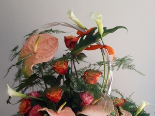Floralité 1