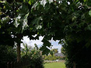 Les Jardins de Joséphine 2