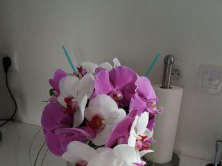 L'Orchidia 1