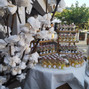 Le mariage de Chacha et Distillerie de Pietracorbara 14