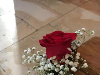 Drôle de Fleur 4