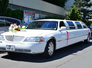 Hovik FR Limousine 3