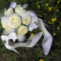 Reves de Fleurs 20