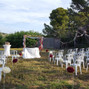 Le mariage de Alexandra et Domaine le Mas de Laux 16