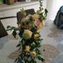 Papillon Citron 3