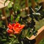 Le mariage de Audrey et Atelier Floral 64 6