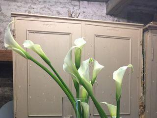 Eclat Floral 3