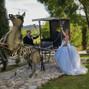 Le mariage de Lucile et Pascale Devigne 48