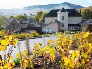 Château des Loges 5