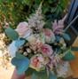 Le mariage de Anne D. et Hanaya Fleurs 29