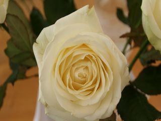 D'Âmes en Fleurs 7