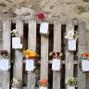 Le mariage de Kévin Blanchet et Ô Sens des Fleurs 14