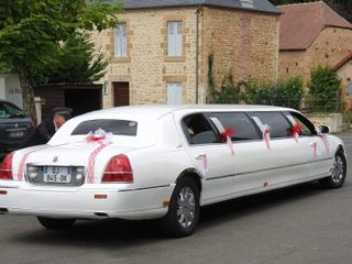 Lincoln Limousines 1
