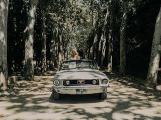 Mustangcab 3