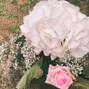 Le mariage de Pnoelle et Luxevents 12