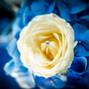 Le mariage de Gaelle Pouthier et Esdecomariage 27