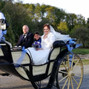 Le mariage de Marine Fossard et Attelages de Rougeau 6
