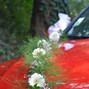 Le mariage de Alexia P. et Pertuis Fleurs 7