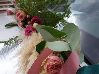 Fleurs d'Eucharis 4