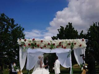 Alicia Wedding Planner 2