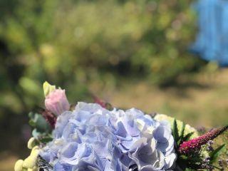 Les Fleurs de Riton 4