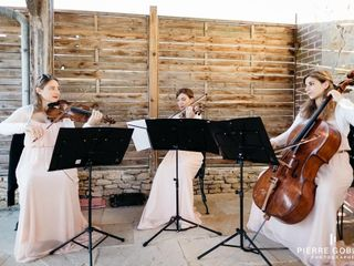 Ivana String Quartet 5