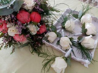Anais Fleurs 1