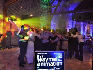 Waymel Animation 1