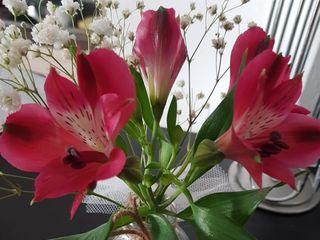 France Fleurs 1