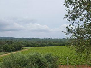 Les Terres de Saint Hilaire 1