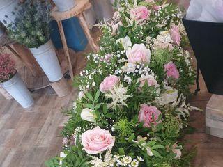 Bloom of Pastel 4