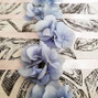 L'Atelier Bleuet 13
