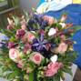 Fleurs & D'Lys 13