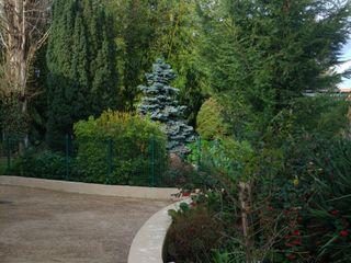 Au Jardin des Saules 2