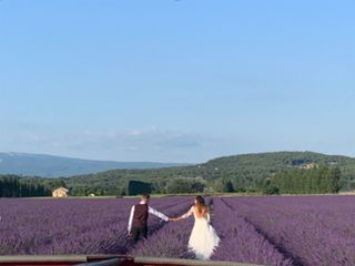 Yes Provence 1
