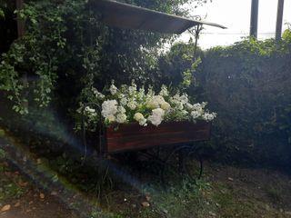 La Terrasse Fleurie 3