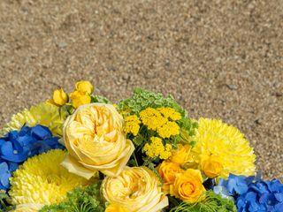 Fleurs de Céléno 1
