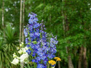 Fleurs de Céléno 2