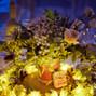 Le mariage de Marie Joubert/Damien Vallier et Fleur à Fleur 23