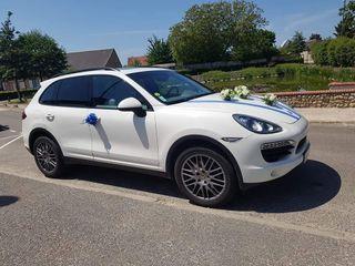 Car & Dream 5