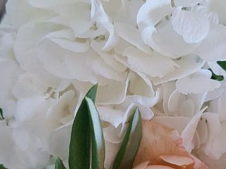 Ambiance Orchidées 3