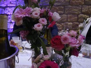 Aloé Fleurs 6