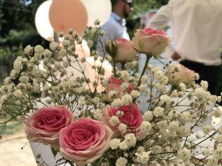 Agate et Rose 3