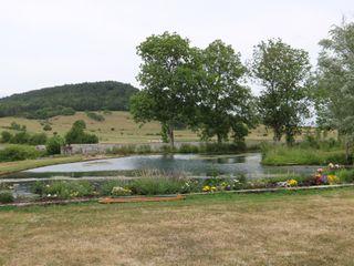 Moulin de la Fleuristerie 4