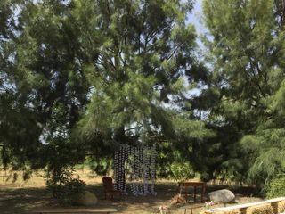 Le Jardin d'Ariane 3