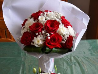 Rapid'Flore 1