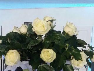 Laurence Fleurs 1