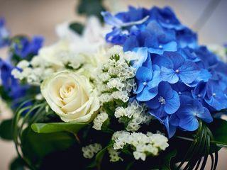 Nuance Flor 5