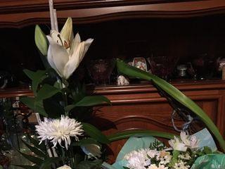 A Fleur de Pot 1